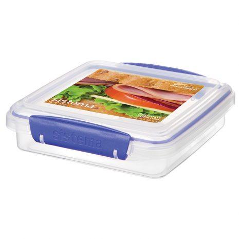 1645_450Ml_Sandwich-Box_Rectangular_Klipit.jpg